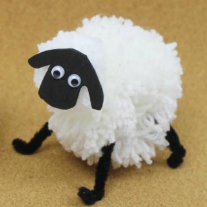 A Fluffy White Sheep